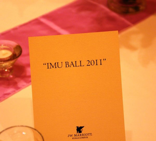 IMU Ball